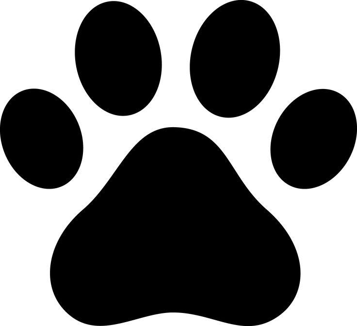 PetPaw Blog